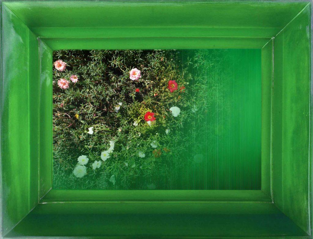 Chiara Denys, Poisoned Flowers