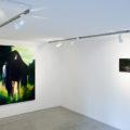 """Finissage""""Into the Woods"""" – Villa Contemporanea"""