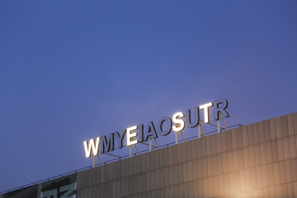 Shilpa Gupta, My East is your West
