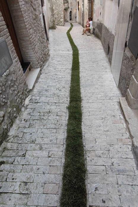 greencarpet2