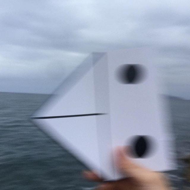 Luoghi Corsello, Pea Brain, al mare, 2016, retro del libro artista realizzato per la mostra ailanto presso l'orto botanico di Palermo, foto Cuoghi Corsello