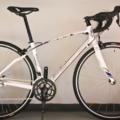 11 biciclette d'artista Senza Barriere in asta