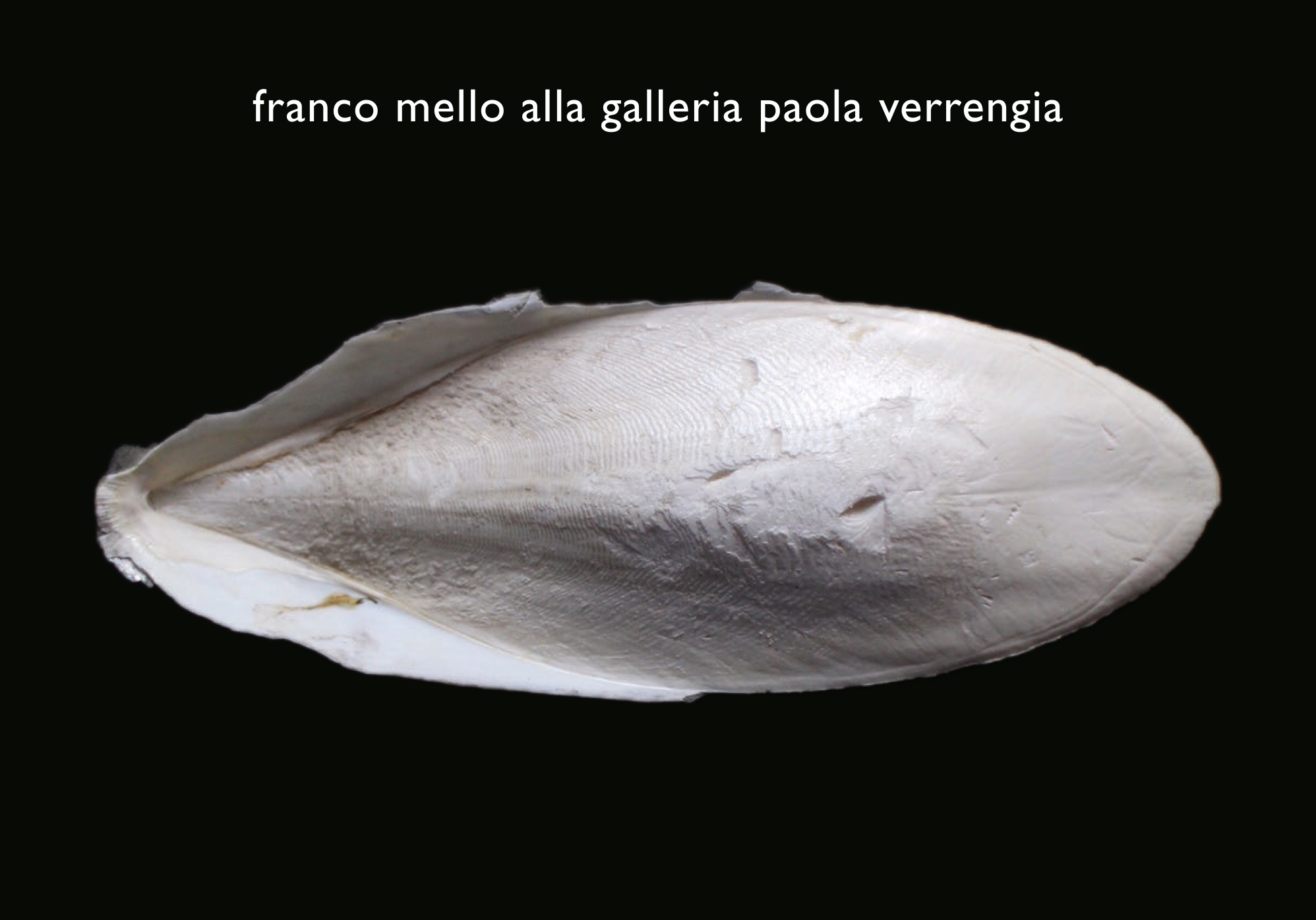 Innesti, Franco Mello tra arti e design