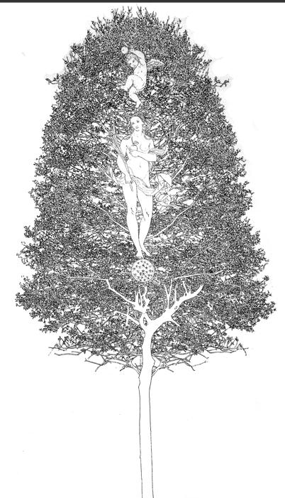 Fernando De Filippi. I materiali della memoria