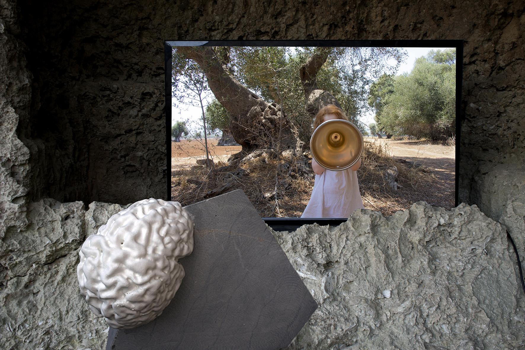 Agnese Purgatorio, Cerebrale, 2016, installazione al MUSMA, 2018