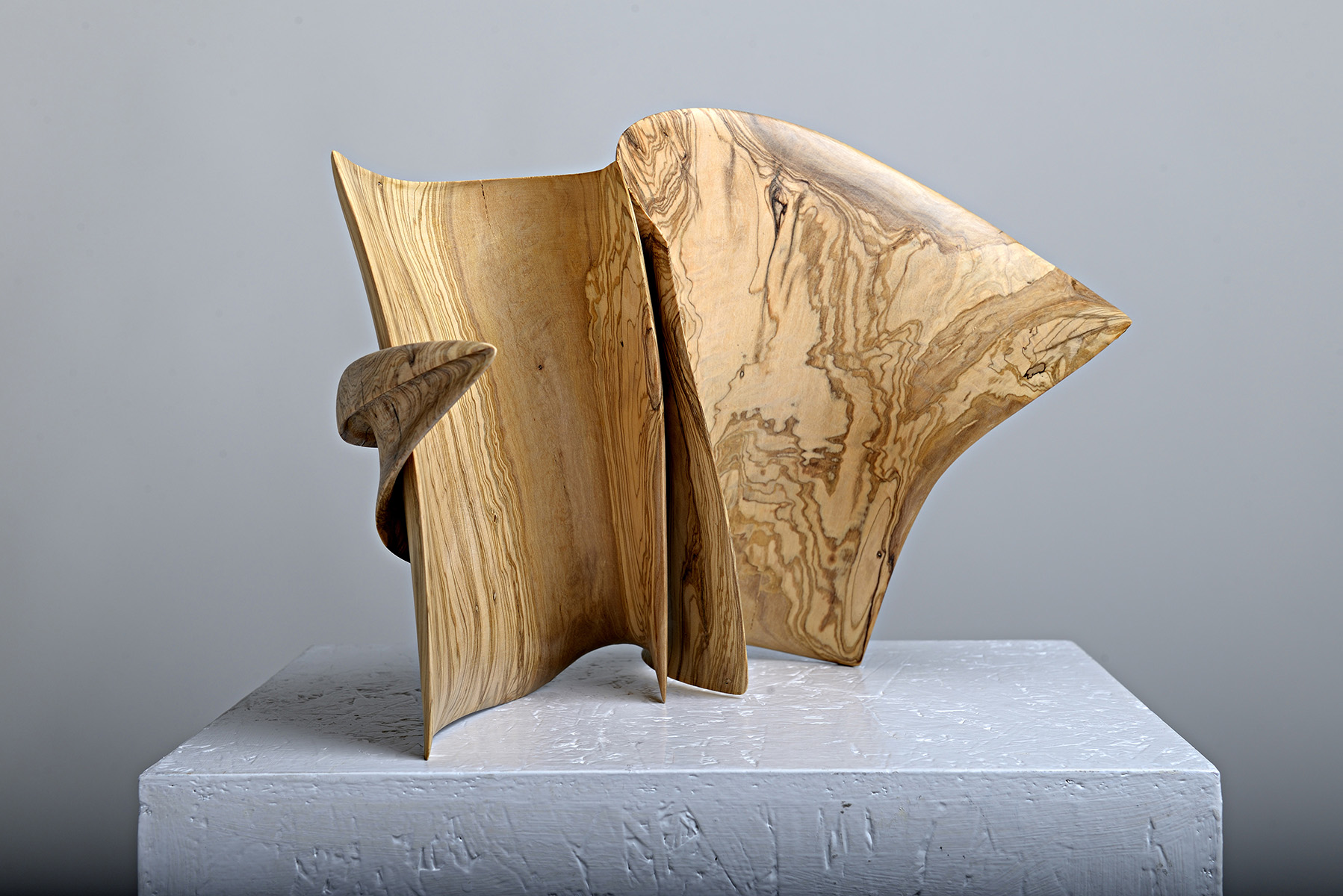 Libri d'artista. L'arte da leggere