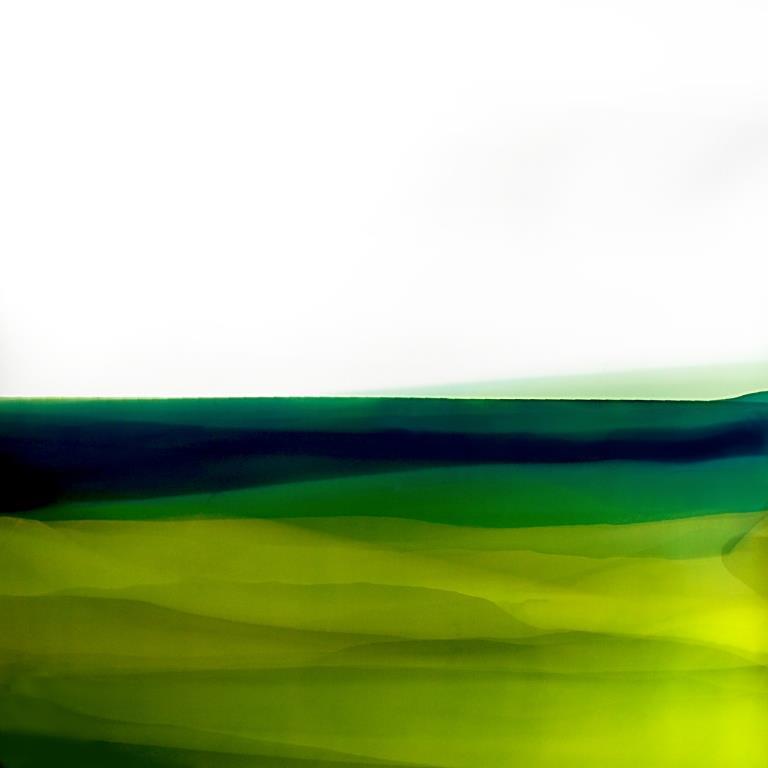 Giacomo Montanaro Interior Landscapes # 14 2017 acidi su carta fotosensibile 70x70 cm
