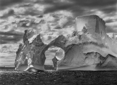 Salgado, Penisola antartica 2005