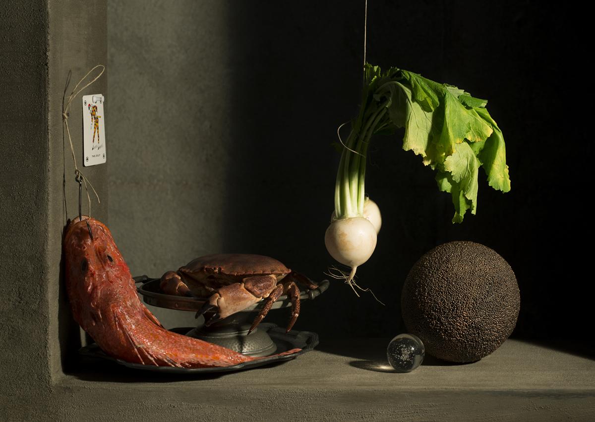 Francesca Moscheni, L'estetica del Rebus NATURA MORTA CON GRANCHIO141x100 cmtiratura limitata 1/7stampa su carta cotone fine artCertificazione Fine Art Trade Guild