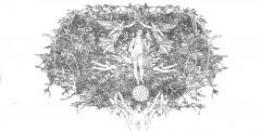 Gli alberi alchemici della masseria Coccaro - china su carta di riso - cm.142x75