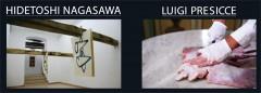 presicce-nagasawa